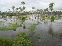 Lago do Rio Longá (período chuvoso) zona urbana